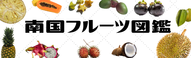 南国フルーツ図鑑