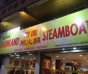 Farm Land steam boat (1)