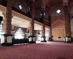 ピンクモスク マレーシア (11)