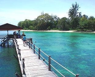 コタキナバル TAR海洋公園 (4)