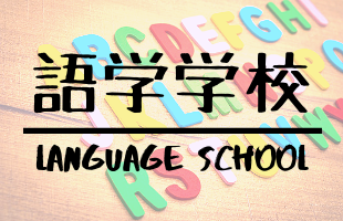 語学学校特集